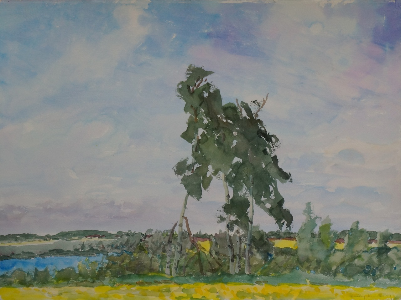 Canadian Landscapes Dorothy Knowles Leaning Trees
